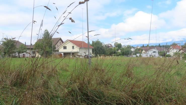 Die Profilstangen stehen seit rund drei Jahren im Dorfzentrum.
