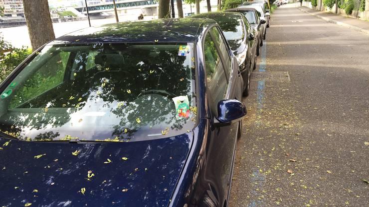 Mein Auto, wie es mit Anwohnerkarte nicht im Parkverbot steht.