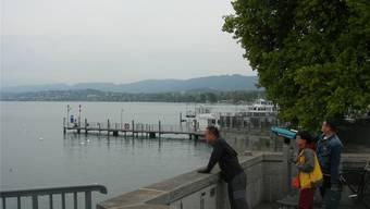Pläne für ein Seeufer-Restaurant beim Bürkliplatz in Zürich gibt es schon lange, doch bis heute ist es nicht in Sicht.