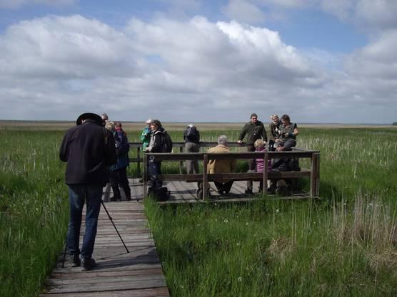 Weit draussen auf der Endplattform sind Sümpfe mit ihren Tieren und die Unendlichkeit der Landschaft zu erleben.