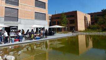 Harmonisch miteinander verbunden: rechts die alte Schulanlage mit Biotop, links das neue Gebäude mit kleinem Teich.