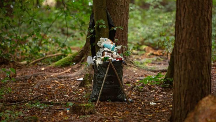 Schwule Im Wald