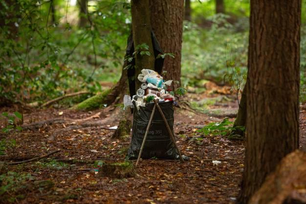 Ältere Männer halten den Wald sauber.