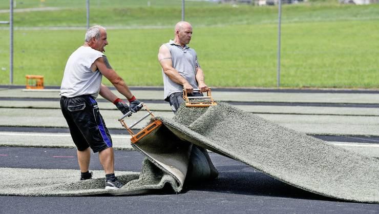 Mit viel Muskelarbeit muss der neue Kunstrasen des FC Wädenswil zurechtgezupft werden.