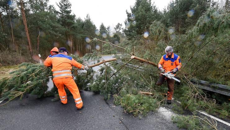 Zahlreiche Strassen mussten von umgefallenen Bäumen befreit werden - wie hier in Bordenau.