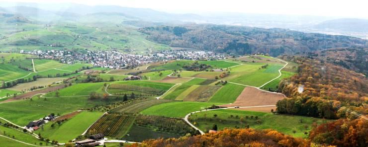 Schaut man vom Sonnebergturm Richtung Osten, zieht sich die Gemeinde Magden durch die Landschaft.