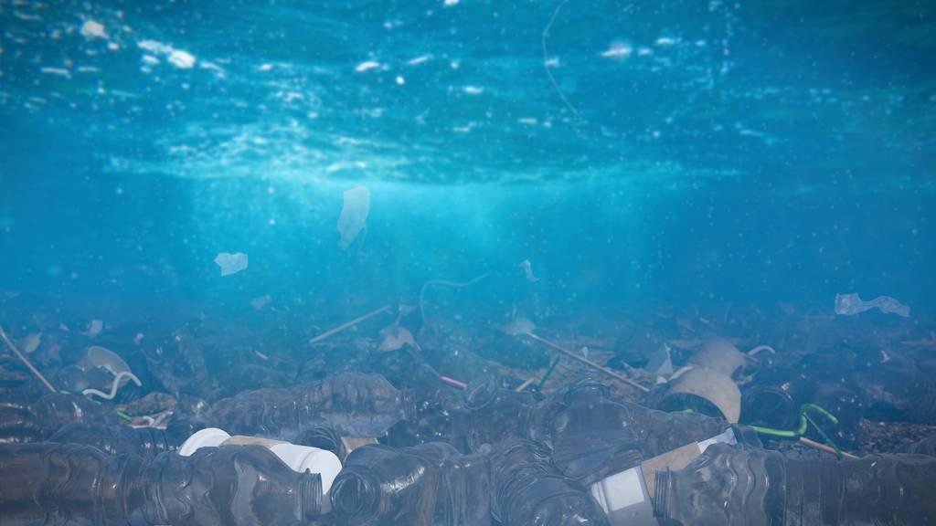 Abfall an Stränden nur Spitze des Eisbergs