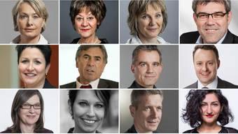 Von links nach rechts und oben nach unten: Elisabeth Schneider (CVP/BL): APK | Susanne Leutenegger (SP/BL): WAK (Präsidentin) | Maya Graf (G/BL): WBK, GPK | Eric Nussbaumer (SP/BL): UREK, APK | Daniela Schneeberger (FDP/BL): Legislatur, WAK | Christoph Eymann (LDP/BS): WBK | Beat Jans (SP/BS): WAK, UREK | Sebastian Frehner (SVP/BS): SGK, FK | Silvia Schenker (SP/BS): SGK | Sandra Sollberger (SVP/BL):  FK, Legislatur | Thomas de Courten (SVP/BL): GPK, SGK, Legislatur, Immunität | Sibel Arslan (G/BS): APK, RK