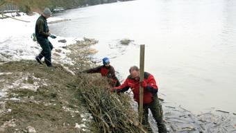 Werner Schumacher und seine Arbeiter verstärken die Uferstrukturierung.