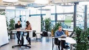 Im Innovationszentrum Startfeld sind heute 30 Start-ups eingemietet.