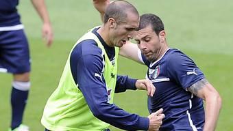 Wieder am Ball: Giorgio Chiellini (links)
