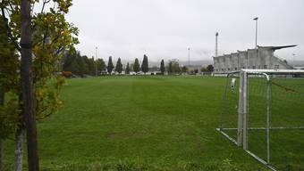 """Stadion """"Wembley"""" hinter dem Stadion Brühl, wo ein Kunstrasenplatz eingerichtet werden soll"""