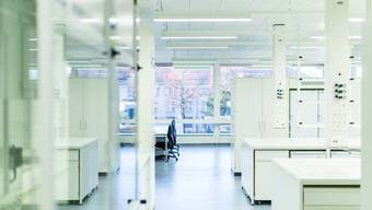 So sehen die neuen Labors des Departements Biomedizin aus.