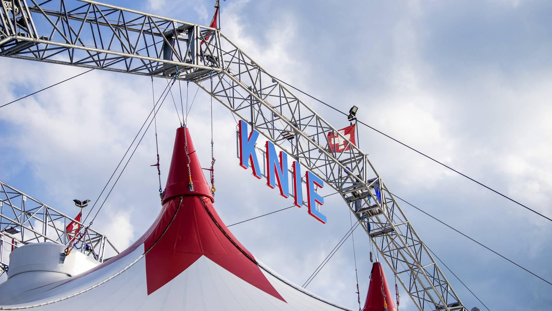 Circus Knie klagte gegen Viagogo