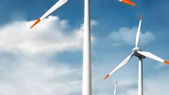 Viele Projekte wie Windparks sind aus Umweltschutz- oder Raumplanungsgründen kaum rasch zu verwirklichen.