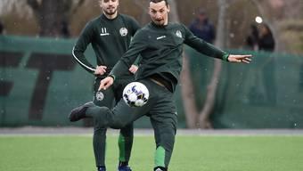 Zlatan Ibrahimovic bei einer Direktabnahme im Training im vergangenen April in Schweden.