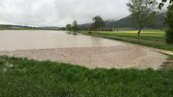 Überschwemmung im Limpachtal zwischen Messen und Oberramsern