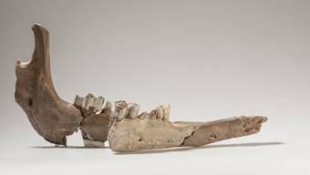 Spätrömische Funde in der Schweiz
