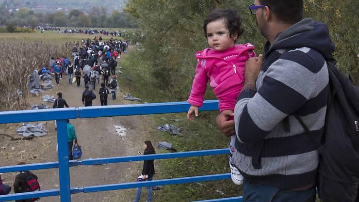 Flüchtlinge an der kroatisch-slowenischen Grenze - eine der Hauptursachen für den Flüchtlingsandrang ist der Bürgerkrieg in Syrien.