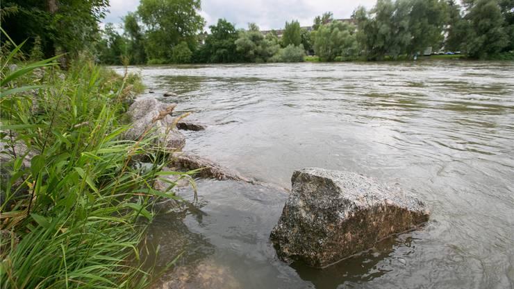 Im letzten Sommer stieg ein 31-jähriger Inder bei der Zurlindeninsel Aarau in die Aare und ertrank.