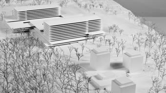 Spitalplanung stoppen: Auf dem Bruderholz will der Kanton Baselland das teuerste Hochbauprojekt der Schweiz realisieren. Die Grünen schütteln nur den Kopf. (ZVG)