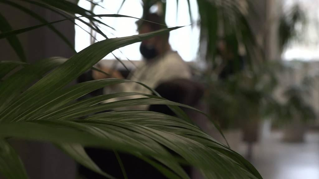 Picknick trotz Maskenpflicht: Trampolinpark wird überrannt