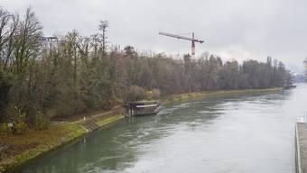 Laut Kantonsgericht braucht es die Aussicht auf eine Rodungsbewilligung, bevor man den Augster Uferwald umzont.