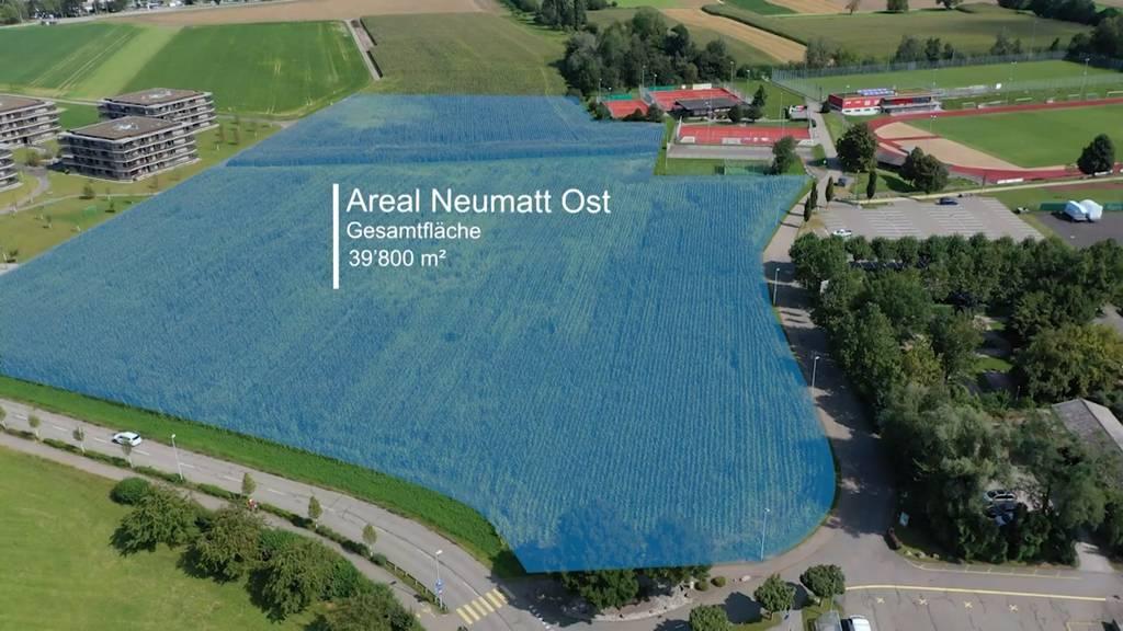 Neue Mittelschule fürs Fricktal wird in Stein AG gebaut