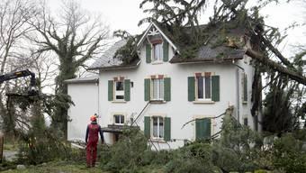 Die GVZ geht von einer Schadenssumme von 5 bis 6 Millionen Franken aus. (Themenbild)