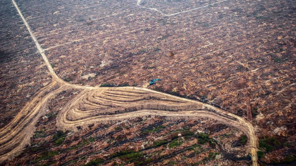 Gegen die «Grüne Wüste»: Referendum über Freihandel ist lanciert