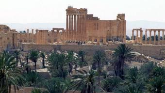 Die antike Wüstenstadt Palmyra - vor einigen Wochen wurde sie von der Dschihadistenmiliz Islamischer Staat (IS) eingenommen (Archiv)
