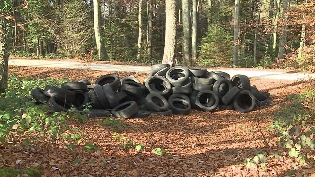 150 Pneus illegal in Wald entsorgt