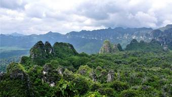 Karstfelsen in der indonesischen Provinz Ostkalimantan. Die nun datierten Höhlenmalereien befinden sich in einer der dortigen Kalksteinhöhlen.