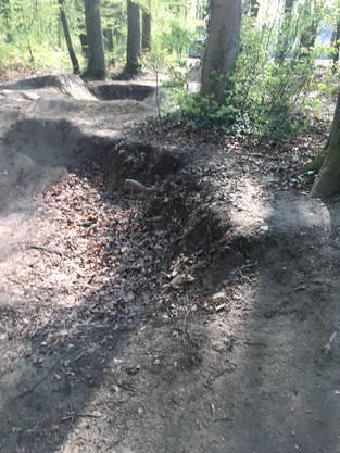 Wurzeln der Bäume wurden durch die Piste beschädigt.