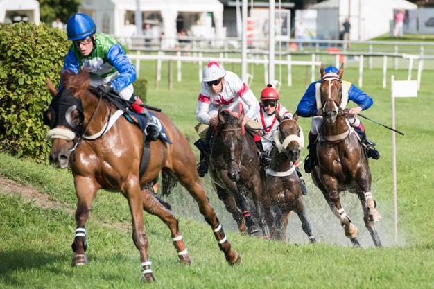 Die Pferderennen in Aarau sind eines der Acht Highlights in diesem Jahr.