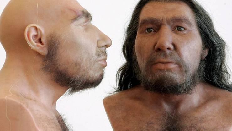 Neandertaler konnten tief atmen, aber weniger zubeissen als gedacht ...