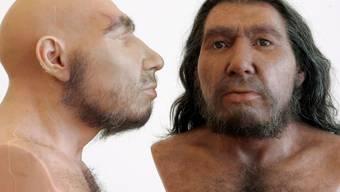 Mit ihrem anders geformten Gesicht konnten Neandertaler mehr Luft einatmen als moderne Menschen. (Archiv)