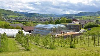 Mit dem neuen Gewächshaus ist die erste Bau-Etappe des Forschungscampus abgeschlossen. zvg/Andreas Basler