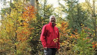 Oberförster Frank Hämmerli für einmal allein im Wald. Hündin Shana wartet im Auto.