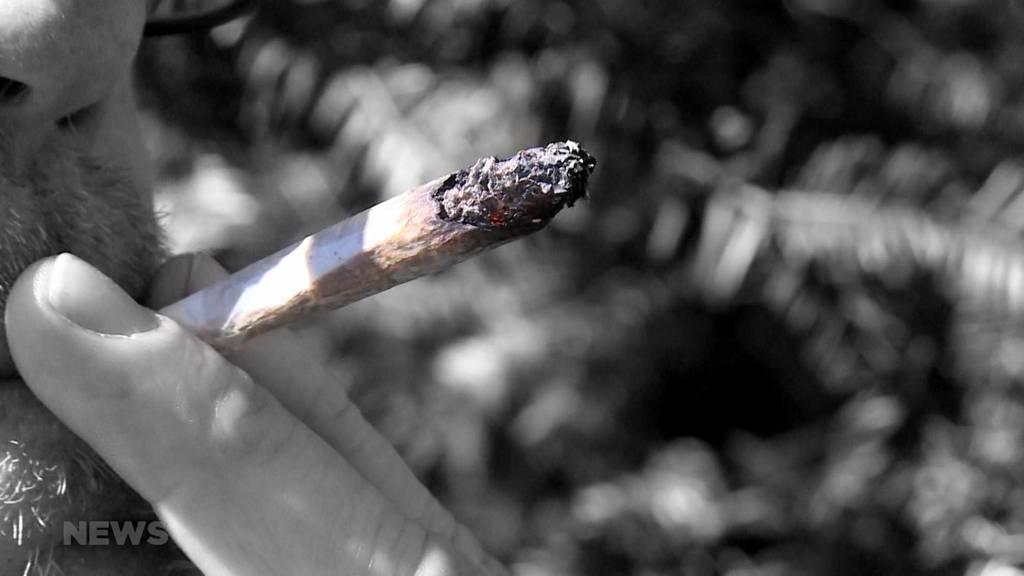 Kiffer-Studie: Aufwind für geforderte Cannabis-Legalisierung?