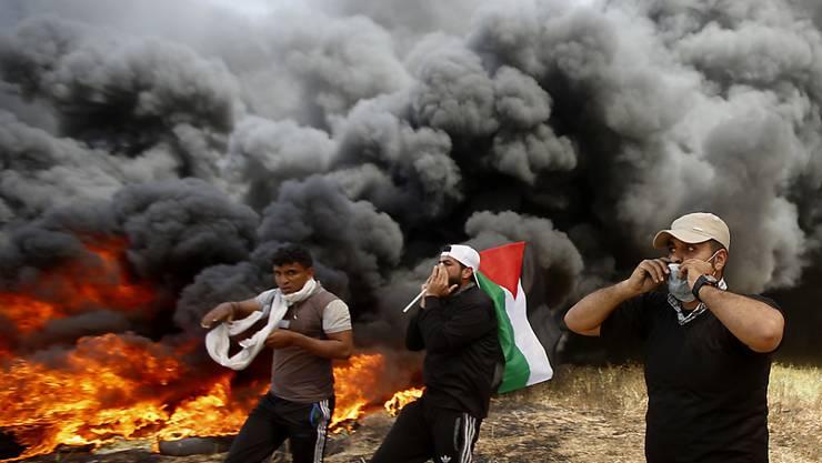 Bei Protesten im Gazastreifen kommen erneut mindestens sieben Palästinenser ums Leben. Mehrere von ihnen erlitten Schussverletzungen.