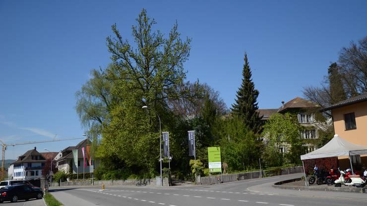 An prominenter Lage am Dorfeingang befindet sich das von den «Gemeinnützigen» betriebene Berufsbildungszentrum (Gartenbauschule)