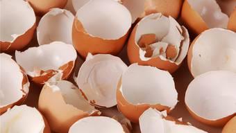 Unsere Autorin kontrolliert beim Eierkauf jedes einzelne Ei auf allfällige Schäden.
