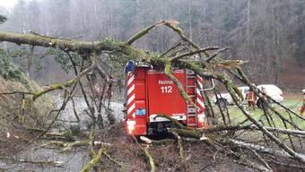 Sturm Burglind in Basel und der Schweiz