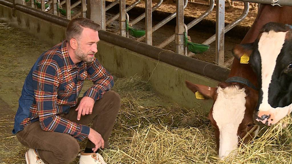 Marco Fritsche verrät den Argovia-Moderatoren seine Bauern-Tipps