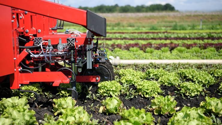 Die Schweizer Landwirtschaft produziert einen grossen Teil der in der Schweiz benötigten Lebensmittel. Dafür importiert sie aber Hilfsgüter wie Dünger aus dem Ausland. (Symbolbild)