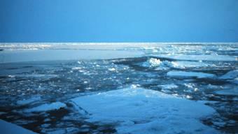 Arktisches Eis (Archiv )