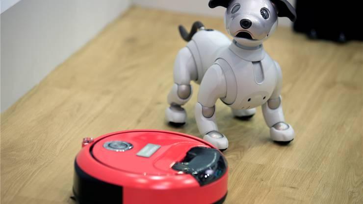Neue, digitale Welt: Der Spielzeug-Roboter in Hundeform aus dem Hause Sony beobachtet neugierig den Staubsauger von Hitachi an einer Elektronikfachmesse in Japan.FRANCK ROBICHON/EPA/Key