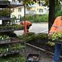 Walter Egger beim Maria-Felchlin-Platz: Aktuell werden dort die Rabatten mit Stauden bepflanzt.