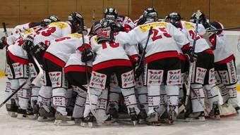 Die Schweizer Frauen Eishockey-Nationalmannschaft will in Malmö an die Leistungen von Sotschi anknüpfen.